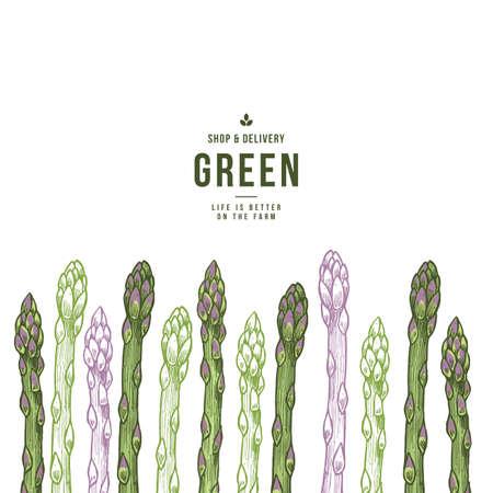Leuke asperges biologische markt ontwerpsjabloon. Organische groenten. Vector illustratie Vector Illustratie