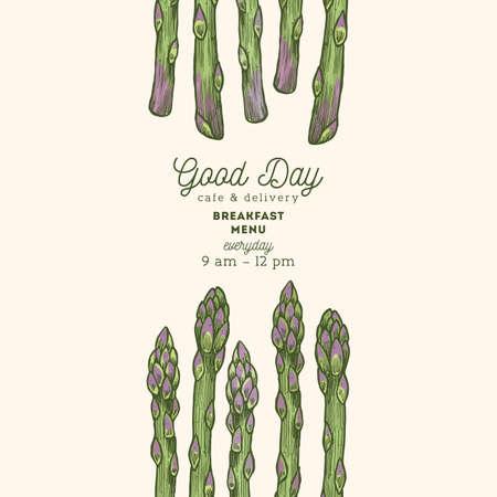 Vintage asperges biologische markt ontwerpsjabloon. Organische groenten. Vector illustratie