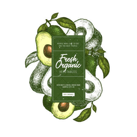 Avocado design template. Organic vegetables. Vector illustration  イラスト・ベクター素材