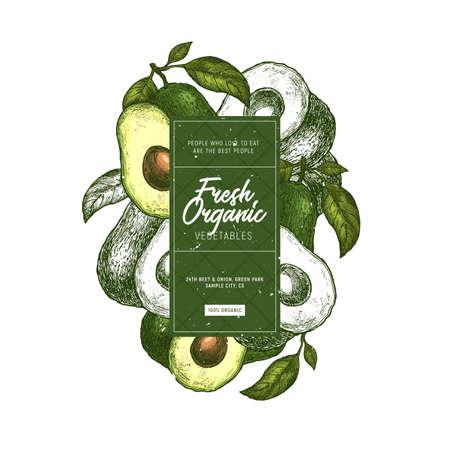 Avocado design template. Organic vegetables. Vector illustration Illustration