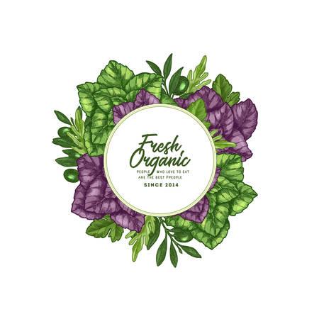 Tasty basil design template. Engraved illustration. Italian ingredients. Caprese ingredients. Vector illustration