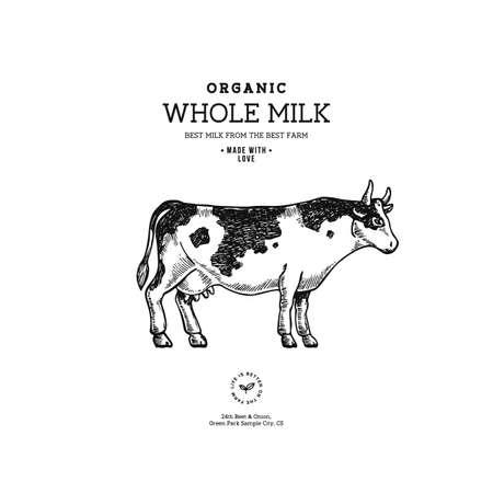 Farm cow vintage . Cow illustration design template. Vector illustration
