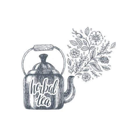 Herbal tea engraved illustration. Kettle tea composition. Vector illustration Illustration