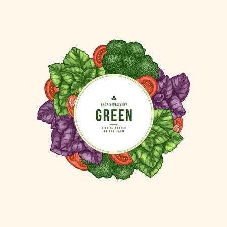 Fresh basil, tomato, broccoli design template. Engraved illustration.  Vector illustration Illustration