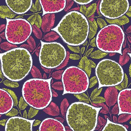 Vintage fig seamless pattern. Botanical background. Engraved fig. Vector illustration Illustration