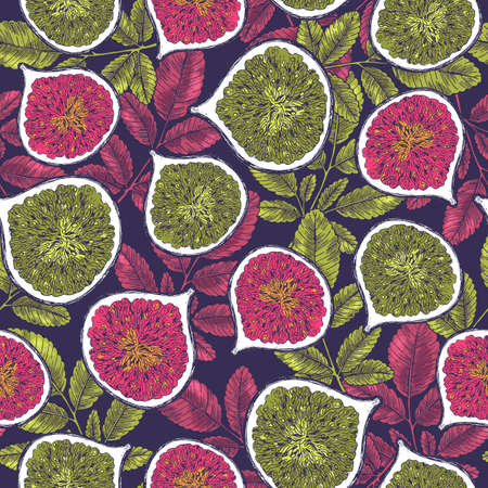 Vintage fig seamless pattern. Botanical background. Engraved fig. Vector illustration Vectores