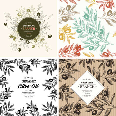Olive design templates. Compositions, seamless pattern. Vector illustration Illustration