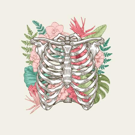 Exotic florals vintage rib cage illustration. Floral anatomy
