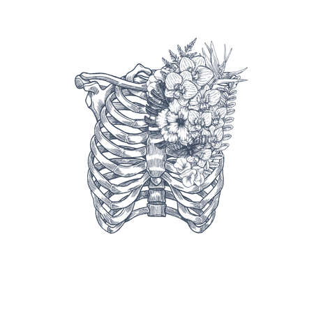 Wild flower vintage rib cage illustration. Floral anatomy. Vector illustration