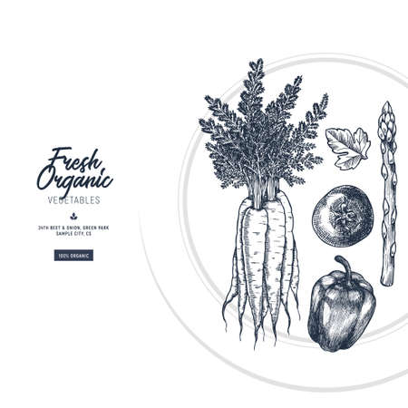 Fresh vegetables plate illustration. Vegan organic restaurant design template. Vector illustration