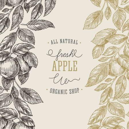 Apple tree design template. Apple leaf engraved illustration.
