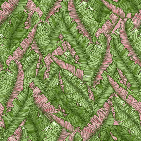 Tropical banana leaves seamless pattern. Exotic background. Vector illustration Ilustracja