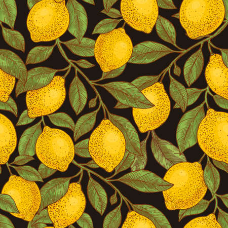 Lemon colored botanical seamless pattern on blackboard background. Engraved style. Vector illustration