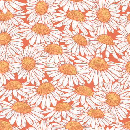 Daisy flower seamless pattern. Chamomile floral background. Vector illustration