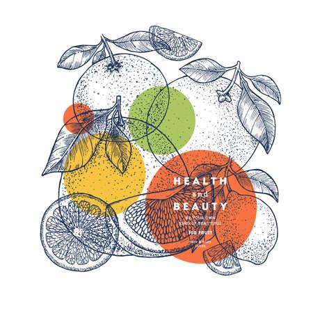 Citrus design template. Engraved style illustration. Orange, lemon, tangerine, pomelo, grapefruit. Vector illustration
