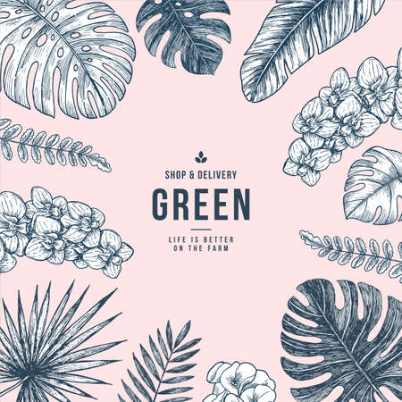 Summer tropical leaf frame. Cover layout template. Floral organic background.  Beauty style.  Vector illustration