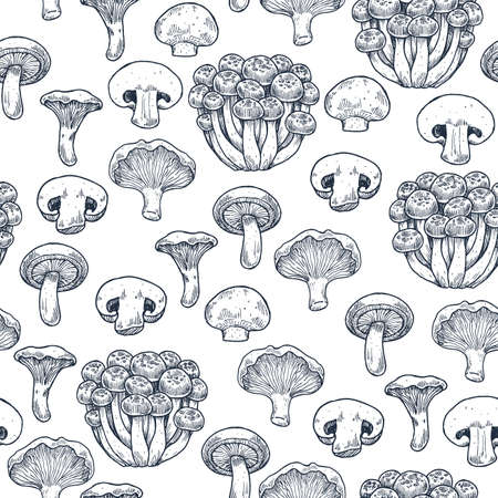 Various mushroom seamless pattern. Engraved style. Vector illustration