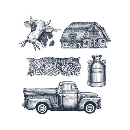Farm objects collection. Cow farm house truck field and milk can. Vector illustration Imagens - 127864857