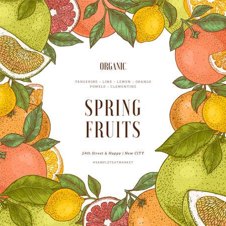 Verschiedene Zitrusrahmen-Design-Vorlage. Gravierte Stilillustration. Orange, Zitrone, Mandarine, Pomelo, Grapefruit. Vektor-Illustration
