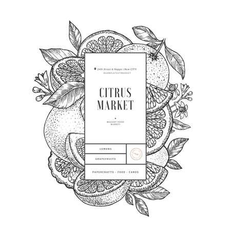 Citrus design template. Engraved botanical style illustration. Orange, flowers, lemon, tangerine slices. Vector illustration Imagens - 127864864