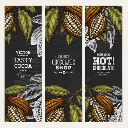 Cocoa bean vertical banner collection. Engraved style illustration. Chocolate cocoa beans.