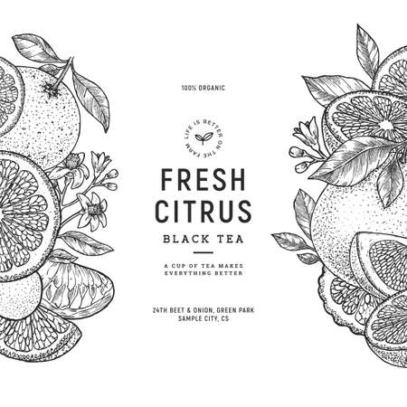 Fresh citrus vintage design template. Engraved  botanical style illustration.