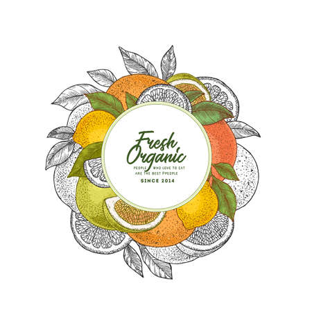 Fresh citrus design template. Engraved style illustration. Orange, flowers, lemon, tangerine. Vector illustration