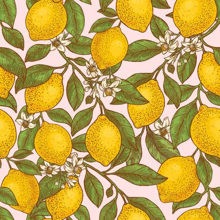 Lemon colored botanical seamless pattern. Engraved style. Vector illustration