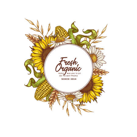 Modèle de conception ronde de ferme. Illustration de style gravé. Avoine, blé, maïs, tournesol, marguerite. Illustration vectorielle