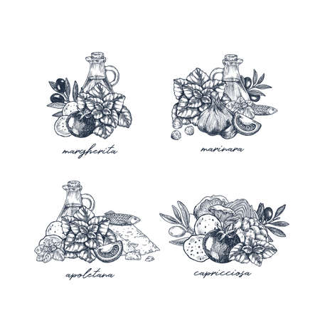Various kind of pizza ingredients. Italian cuisine menu illustrations. Vector illustration Illustration