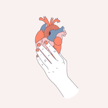 Woman hand holding an anatomic heart. Love pain. Vector illustration Ilustração