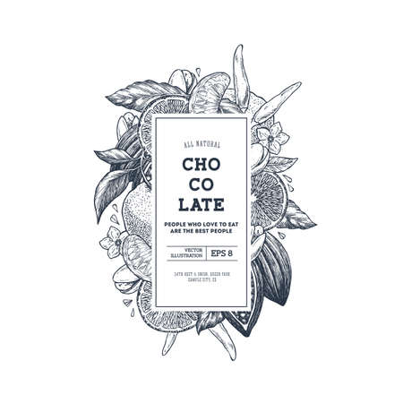 Chocolate packaging design template. Engraved style illustration. Tangerine, pepper, cocoa, chocolate, pistachio. Vector illustration Illustration