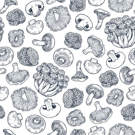 Various mushroom seamless pattern. Vintage style. Vector illustration