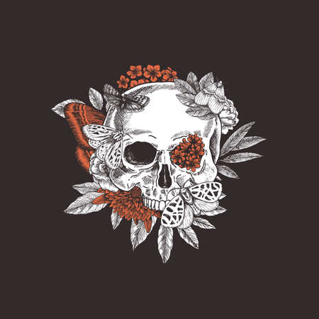 Halloween floral butterfly vintage skull illustration. Human skeleton. Vector illustration Ilustração