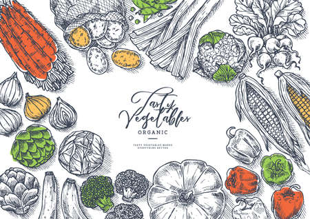 Farm vegetables on white background. Top view. Growing concept. Organic fresh vegetables. Harvest design template. Vector illustration Ilustracja