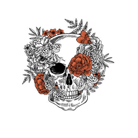 Halloween floral vintage skull with butterfly illustration. Human skeleton. Tattoo design. Vector illustration