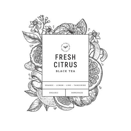 Citrus design template. Engraved botanical style illustration. Orange, flowers, lemon, tangerine. Vector illustration