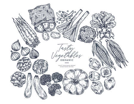 Farm vegetables on white background. Top view. Growing concept. Organic fresh vegetables. Summer food. Vector illustration