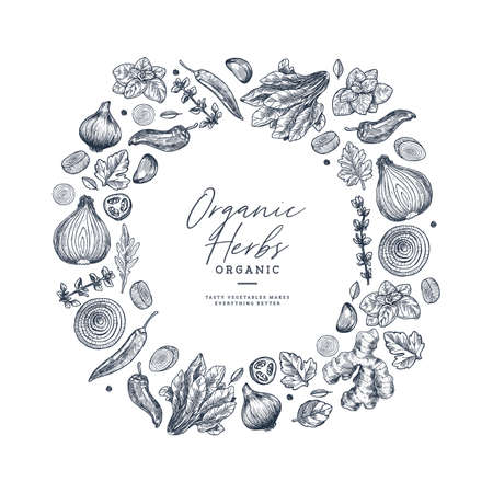 Herbs and spices round design. Ginger, spinach, onion, pepper, garlic, fennel, basil, oregano engraved vintage illustration. Vector illustration