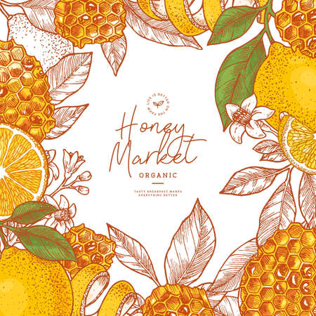 Honeycomb pieces. Honey elements engraved vintage style. Packaging image. Vector illustration