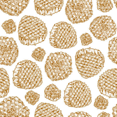 Honeycomb pieces. Honey elements engraved vintage seamless pattern. Vector illustration