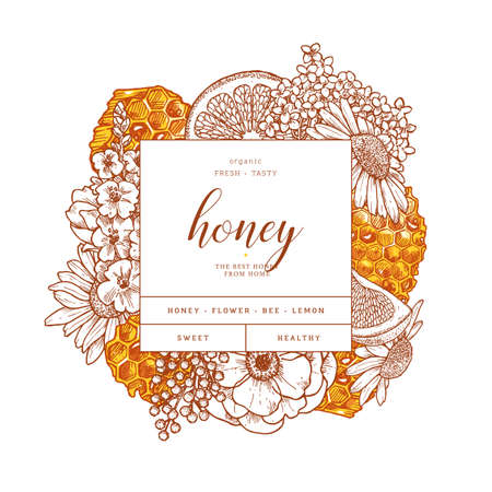 Honeycomb with citrus and flowers. Honey elements engraved vintage style. Packaging image. Vector illustration