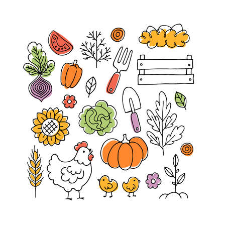 Farm living collection. Linear graphic. Chicken, vegetables and harvest tools. Scandinavian style. Vector illustration