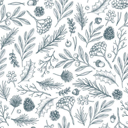 Forest flowers and leaves seamless pattern. Branch, cone, fir tree, berry, misteltoe, acorn. Botanical vintage illustration. Vector illustration