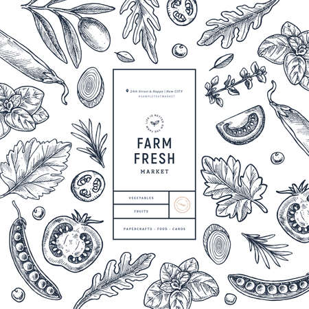 Various vegetables on white background. Growing concept. Organic fresh vegetables. Packaging design template. Vector illustration