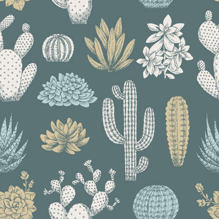 Cactus vintage seamless pattern. Sketchy style illustration. Succulent collection. Vector illustration