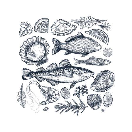 Seafood collection. Engraved vintage sea restaurant set. Fish, prawn, seashell, herbs. Vector illustration