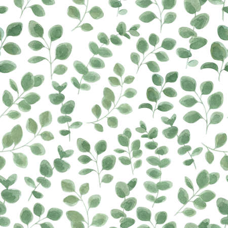 Eucalyptus watercolor leaf seamless pattern. Vintage botanical background. Reklamní fotografie - 146357091