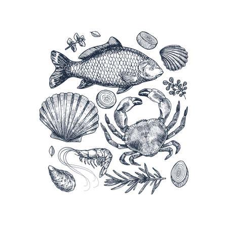 Seafood collection. Engraved vintage sea restaurant set. Fish, seashell, crab, shrimp, herbs. Vector illustration
