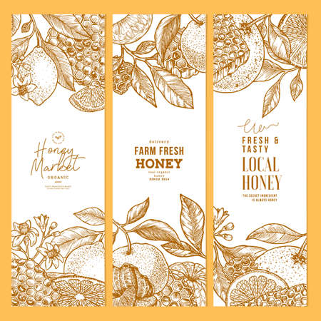 Citrus and honey vertical design templates collection. Engraved botanical style illustration. Vector illustration